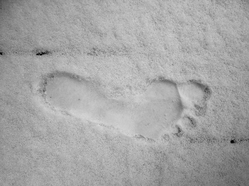 FootprintInSnow_1